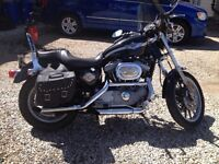 2003 HARLEY DAVIDSON SPORTSTER for sale; ANNIVERSARY EDITION!