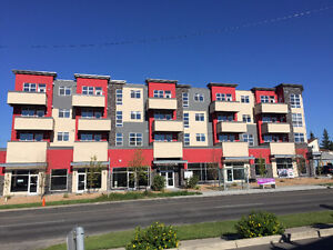 New 1 BR Condo Close to Downtown- Excellent Central Location