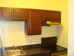 5 bedroom 2 level flat on Dal campus 1233 henry st avail May 1