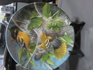 Collector Plate -The Baltimore Oriole