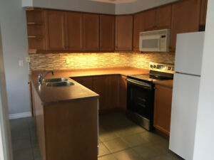 Used Kitchen Cabinets and Counters