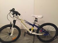 "20"" Wheels Kids Mountain Bike"