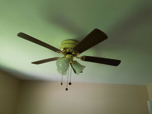 Ceiling fan with light kit