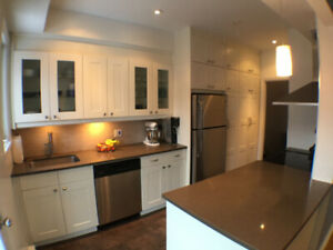 Very bright 2 Bed upper condo fully renovated in NDG / Monkland