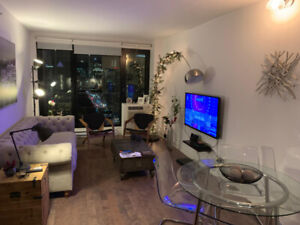 Beautiful 4.5 Penthouse Downtown Montreal - Seville Building