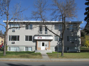 3345 Argyle Road - Large One Bedroom Apartment For Rent