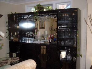 Beautiful Bar/Entertainment Unit