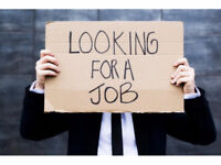 Urgent:  Experienced Reliable Male Worker Looking for Full-Time