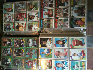3000+ assorted sports cards