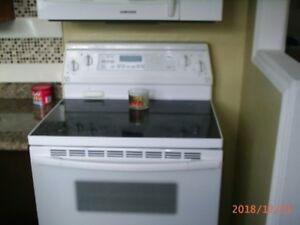 "30"" cermic top self clean stove"