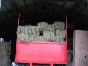 Quality Hay - small & large squares