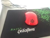 Gaming mouse: Steelseries Kinzu v3 Msi version