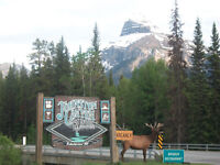 Front line servers in the Rockies Banff Accom available