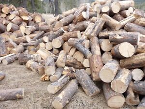 WANTED someone to retail firewood