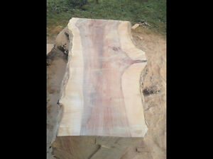 Live edge maple slab.