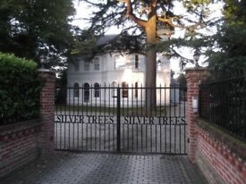 Silver Trees - Spacious double room in modern 3 bed apartment