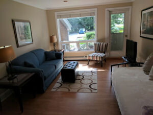 6 Month Furnished Apt rental - Available Oct 27th