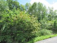 Terre boisée à vendre à Varennes
