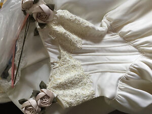 Wedding Dress - Dry Cleaned & Ready