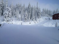 Big White Snow Clearing