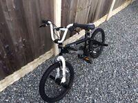 Freestyler vertigo BMX bike