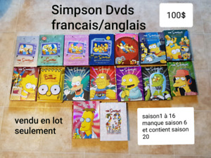 DVD des simpsons