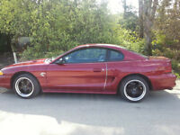 Ford Mustang Coupe (2 door) - Lady Driven