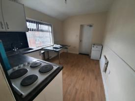 1 bedroom fully furnished new flat Washwood heath road