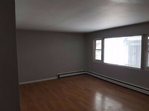 Huge apartment close to everything you need