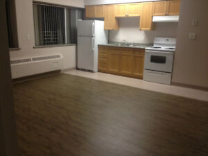 Large, clean  apartment downtown St. Catharines