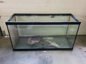 90 Gallon Tank with Drift Wood - Delivery