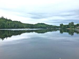 Available lot on the Rivière du Lièvre River Gatineau Ottawa / Gatineau Area image 2