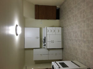 Cozy one bedroom basement apartment in south porcupine