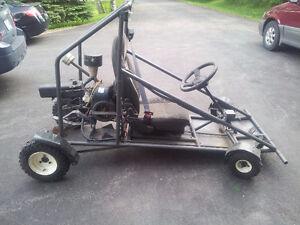 Custom go cart
