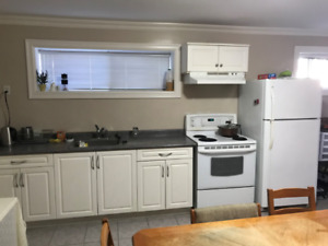 Furnished 2 Bed 2 bath basement suite Close to Metrotown Station