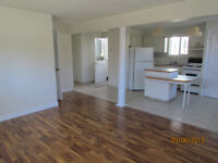 Bright Open Concept Duplex Apt Embleton Ave Great Price