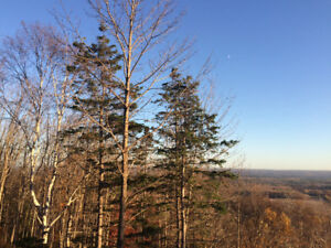 Land for sale with view