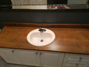 Bathroom sink and counter top