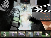 Video Editing Services...