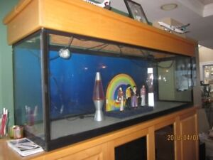 135 Gallon Glass Tank Aquarium