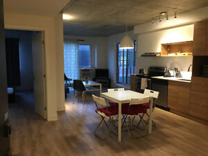 2bdr fully furnished new condo- short term or mthly