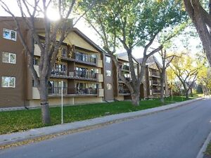 Reduced! - 1 Bed + Den: Downtown Cathedral Top Floor UG Parking