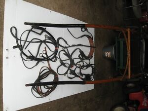Pony harness and cart