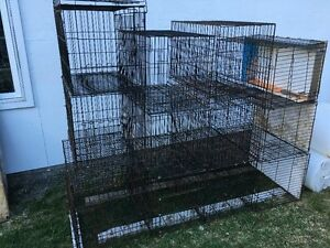10 Cages ( Lot )