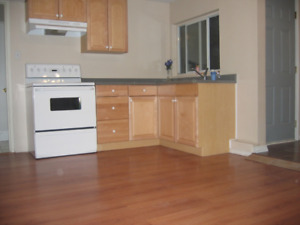 Spacious & quiet large 2 bedroom suite for rent