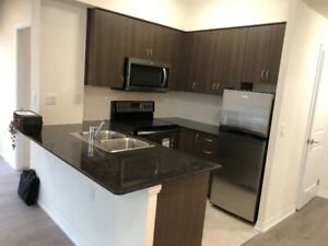 Brand New Two Bed Condo- Allen/Downs view Subway Rented Income