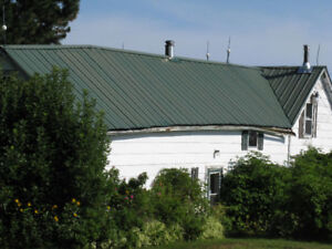 Sheets of steel roofing