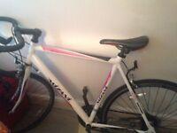 Racing bike for 75