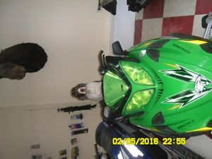 2010 arctic cat crossfire 800 parting out