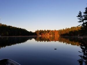 Waterfront Cottage on Trent-Severn Waterway - Revenue Potential